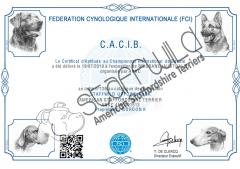 FCI International Show | 19th July 2019 | CACIB Award | Graded Excellent